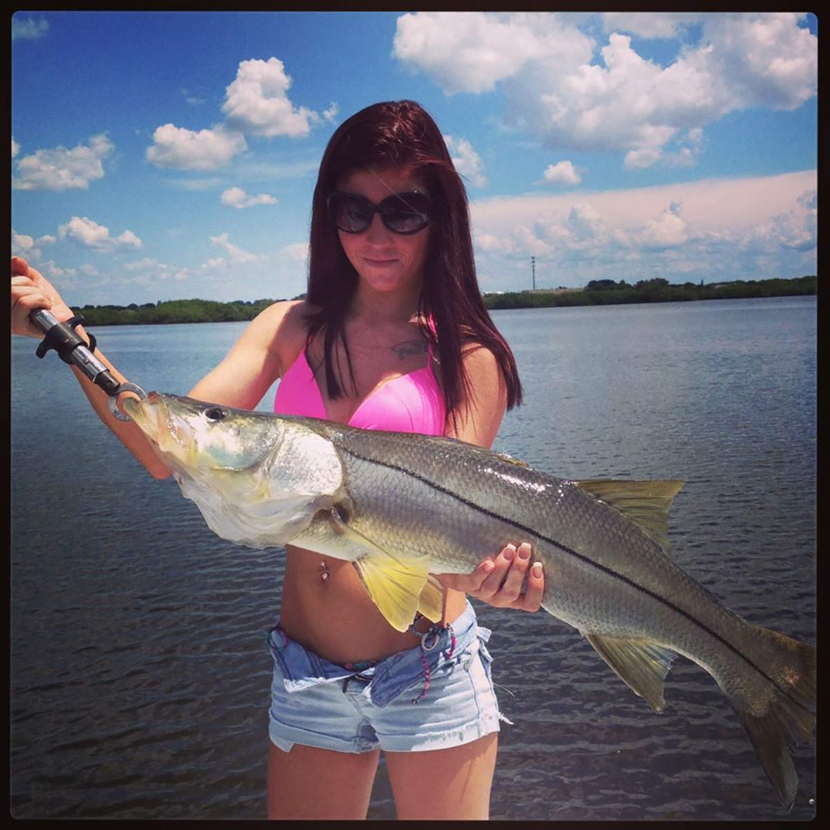 Best fishing charters in clearwater tampa bay area for Clearwater charter fishing