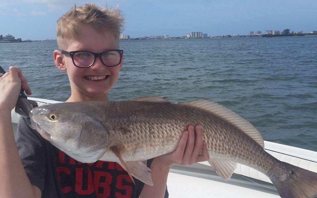 Fishing update for clearwater tarpon springs inshore for Tarpon springs fishing charters