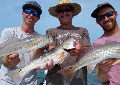 redfish-clearwater-skinnywatercharters