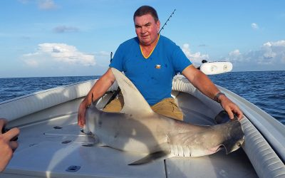 Shark Fishing Charters | Clearwater & Tampa Bay Area