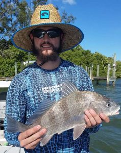 Where to look for best inshore fishing clearwater