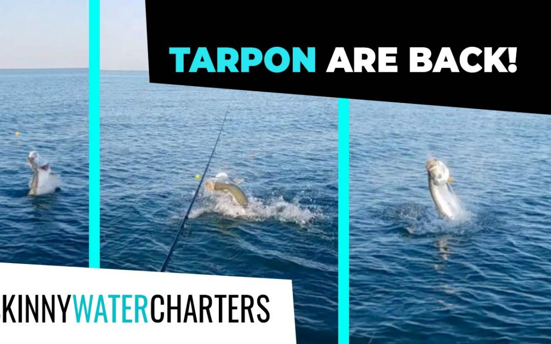 Late May 2021 Report & BIG Fishing Regulation News