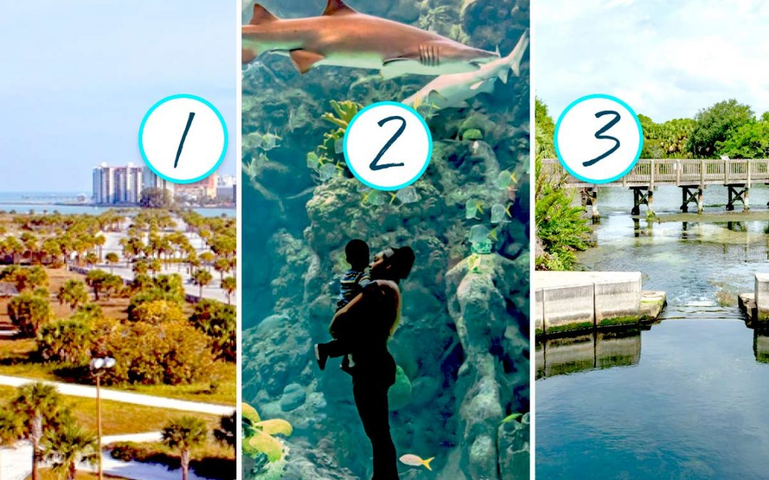 Capt' Craig's 3 Favorite Clearwater Area Attractions