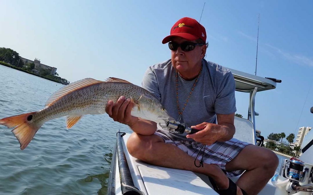 Redfish, Snook & Trout OPEN!